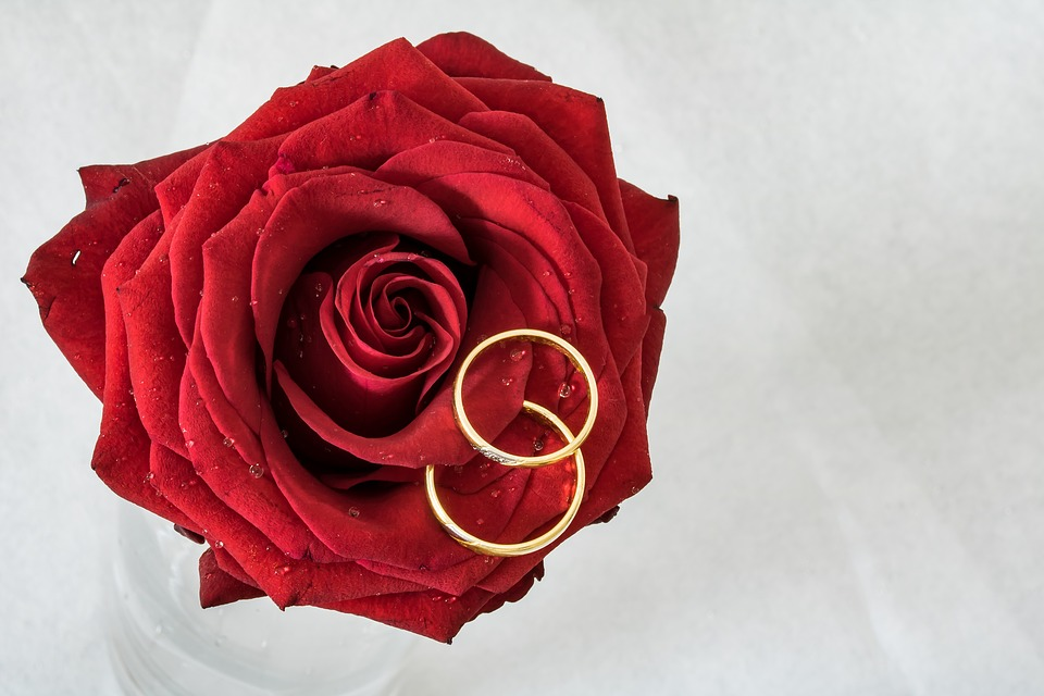 and rose wedding rings photos img photober red on gift free roses box