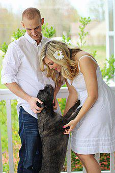 Happy Dog, Happy Family, Happy Couple