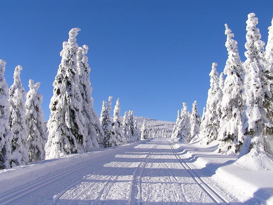 winter-2285329_960_720.jpg