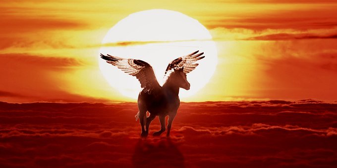 Horse With Wings, Pegasus, Myth, Sunset