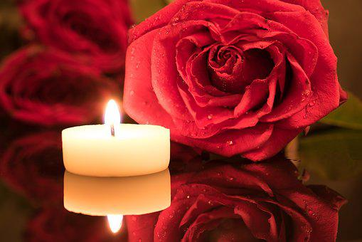 Candle, Red Rose, Candlelight, Rose