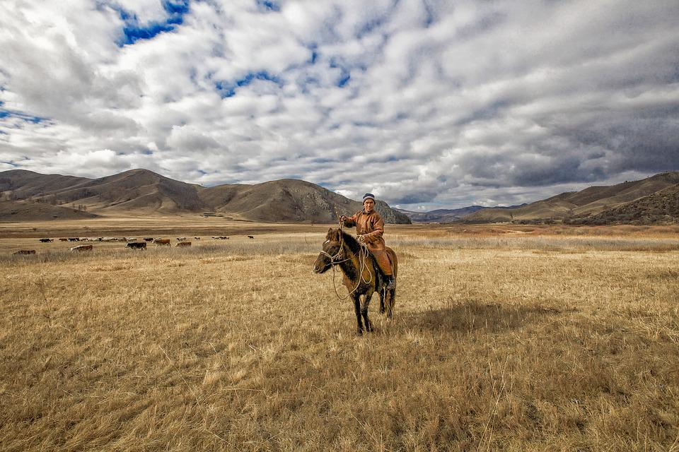 晩秋, 草原, 遊牧民, 馬, ボガット村, モンゴル, 空, 大地