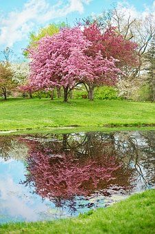 Feel Great - earn money online