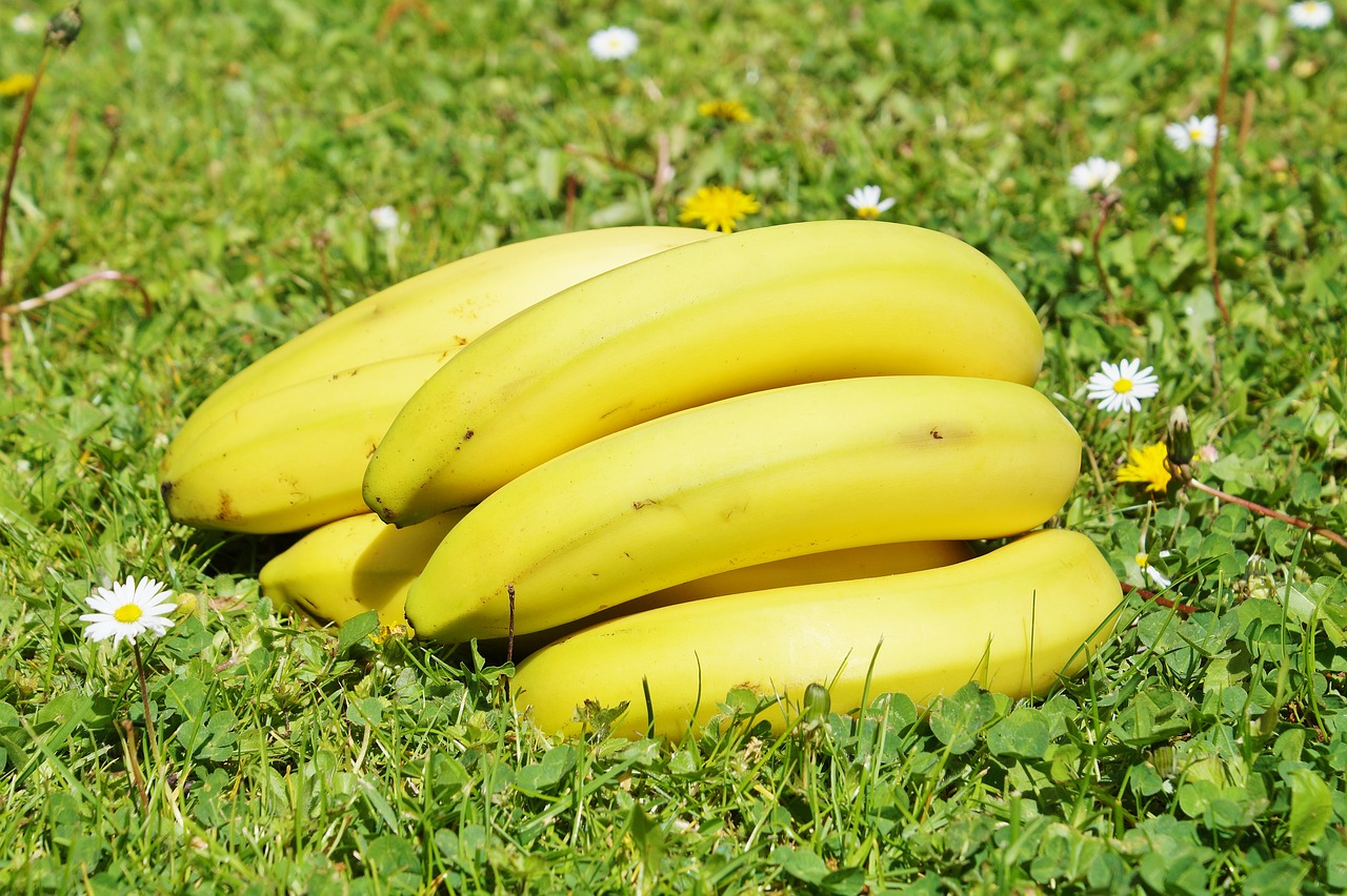 Fact About Health 8 Eating a banana helps stabilize mood disorders