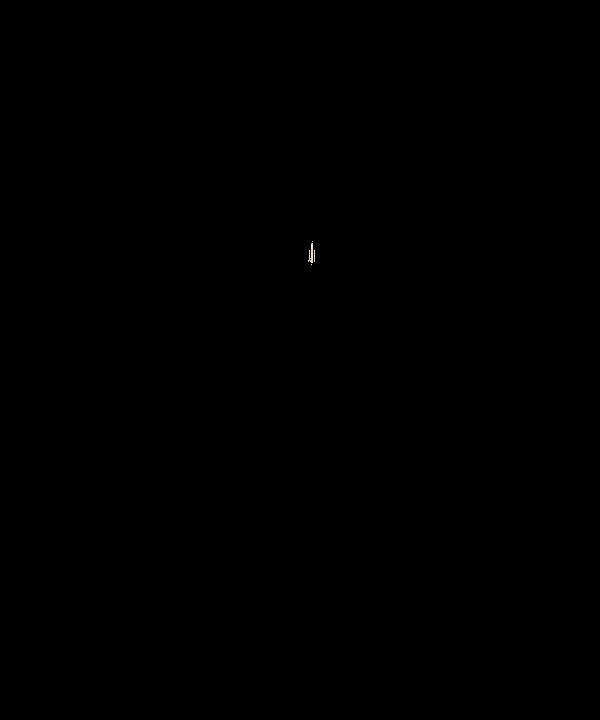 Cerf Animal Deer 183 Free Image On Pixabay