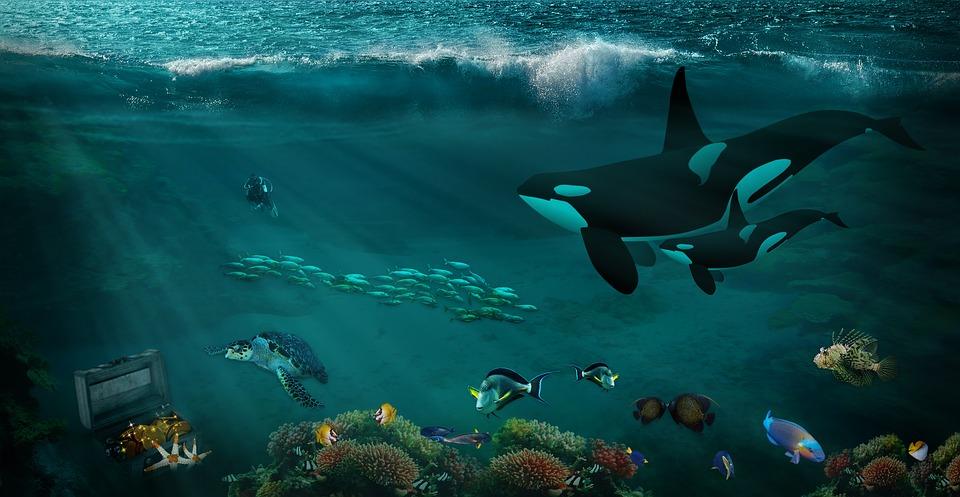 Fantasy, Underwater, Under Water Fantasy