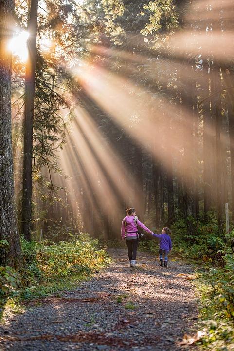 美しい, ブリティッシュ コロンビア州, カナダ, 子, 娘, 家族, 霧, 森林, 黄金の耳パーク, 緑