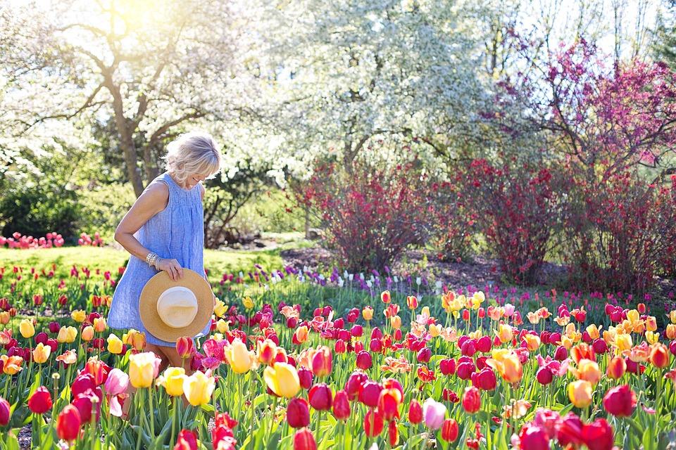 春, チューリップ, きれいな女性, 若い女性, 花, 女性, 自然, 幸福, 日当たりの良い, 日照, 幸せ