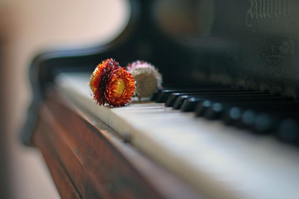 Piano, Dry Flowers, Antique, Atmospheric