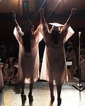 graduation, education
