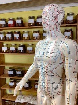 Acupuncture, Herbs, Alternative