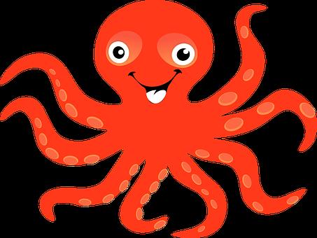 Stříbrná Chobotnice, Moře, Pobřeží