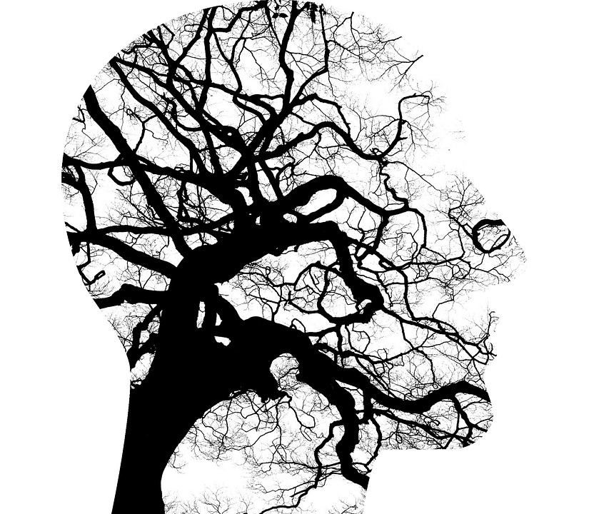 Mental Health, Brain, Thinking, Tree Branches, Disorder