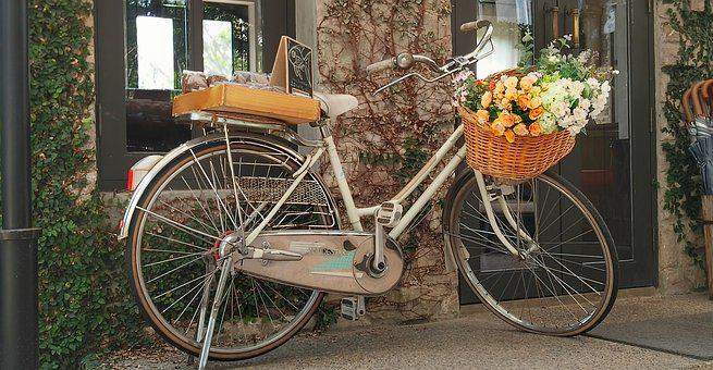 Bicycle, Flowers, Hotel, Thailand