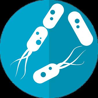 細菌のアイコン, 大阪大学総長平野俊夫からのアイコン, 細菌を腸, 植物