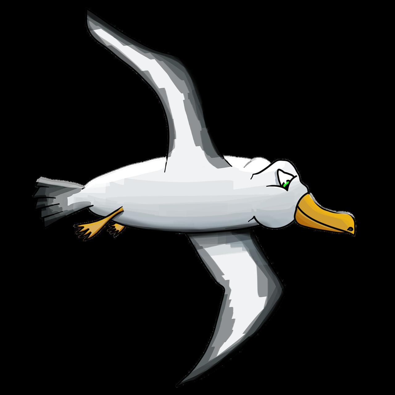 Альбатрос птица картинка для детей