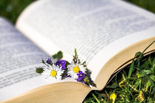 雏菊, 贝利斯哲学, 荣誉奖, 维罗妮卡, 芭蕉温室, 本书, 打开的书