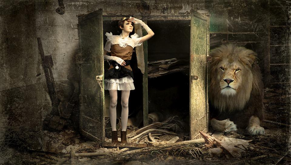 Woman, Cabinet, Lion, Lapsed, Old, Broken, Risk