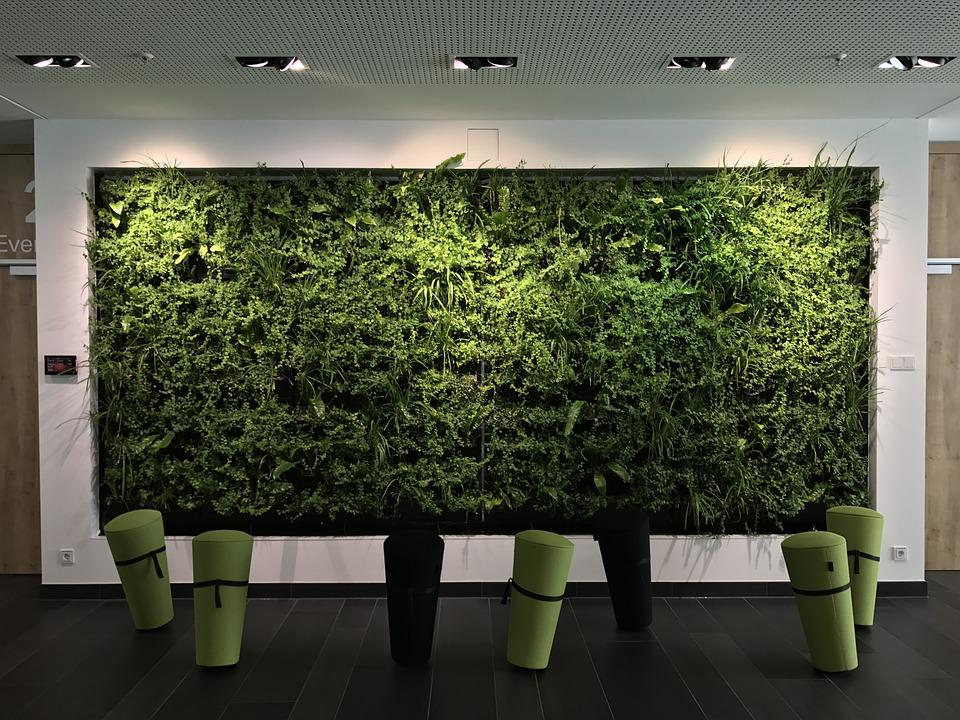 office relaxation. Office Relaxation Workplace Business Green Career E