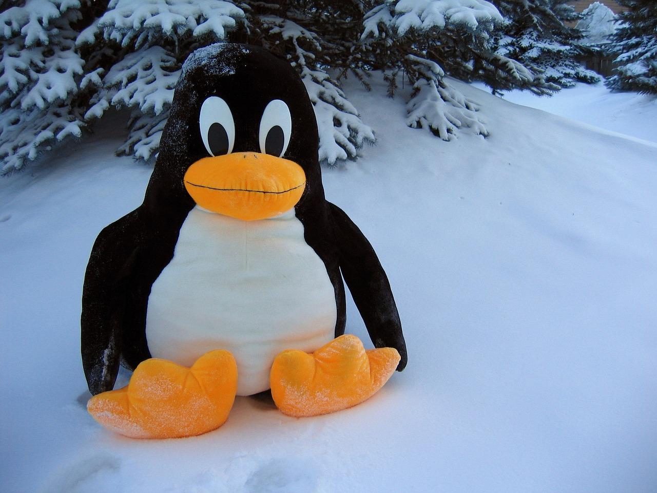 Открытки, пингвин прикольный картинки