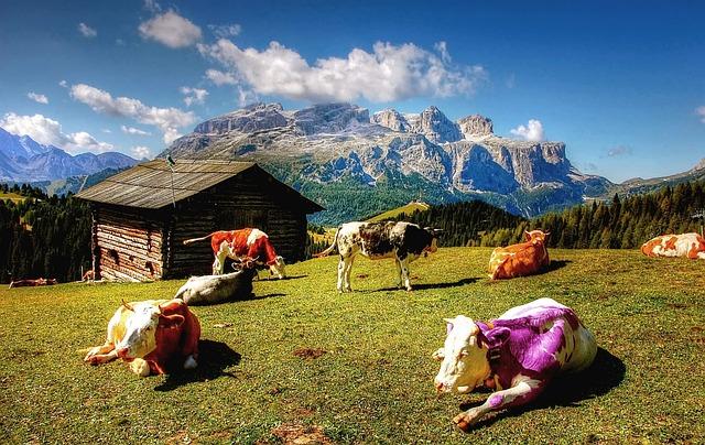 Alm Alpen Berge · Kostenloses Foto auf Pixabay