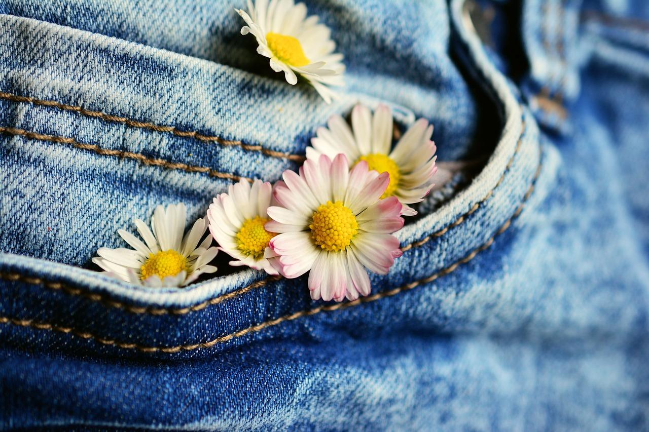 pocket of a jean