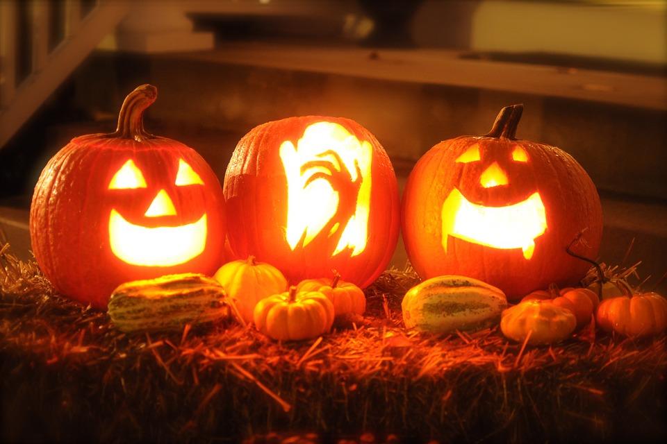 pumpkin halloween autumn october orange horror - Halloweenpictures
