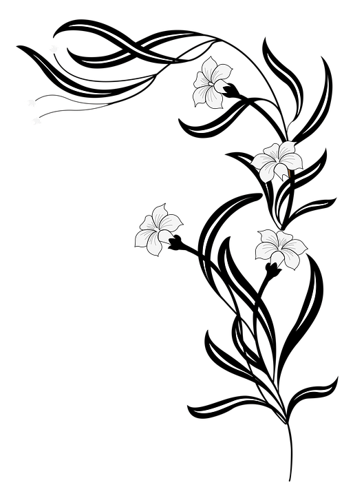 Рисунки чёрно белые для раскрашивания