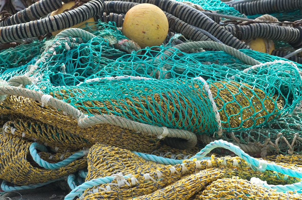 объекты, элементы найти фотографию вьетнамка в рыболовных сетях хорошо выручает