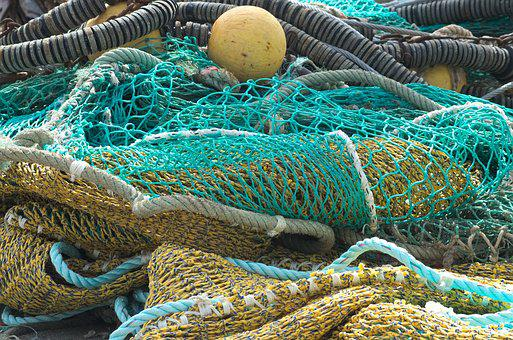 Filets De Pêche, Poissons