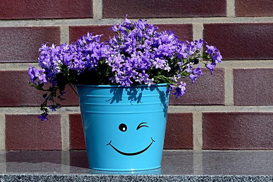 Flowerpot Deco Smiley   Free photo on Pixabay