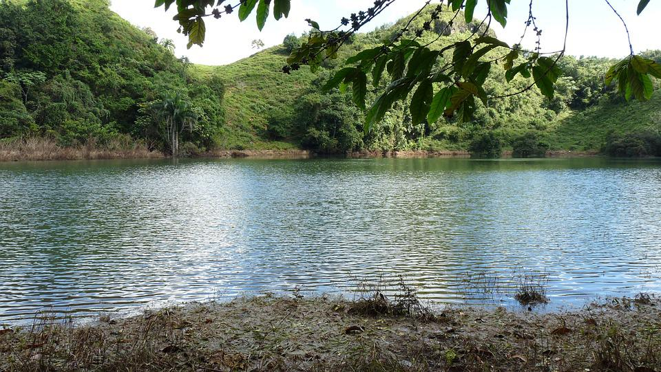 Lac, Las Terrenas, Nature