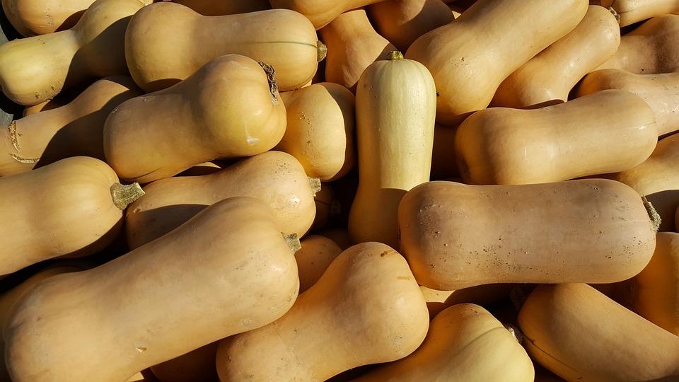 Butternut, Citrouille, Courge, Orange, Légumes, Potiron