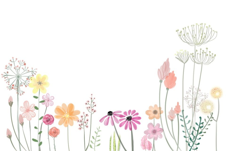 çiçek Boyama Bahar Pixabayde ücretsiz Resim