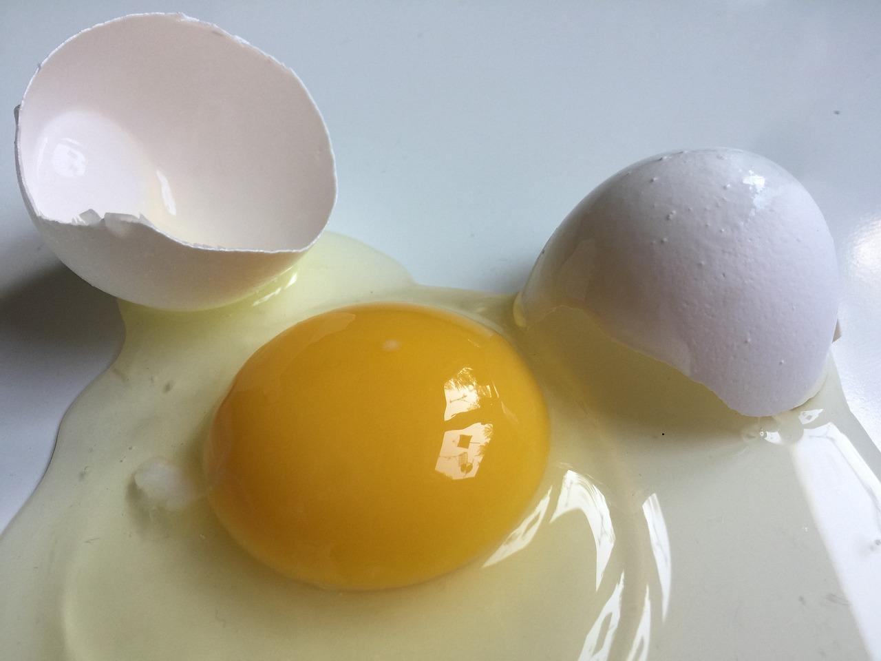 Тухлые яйца - ЯПлакалъ 33