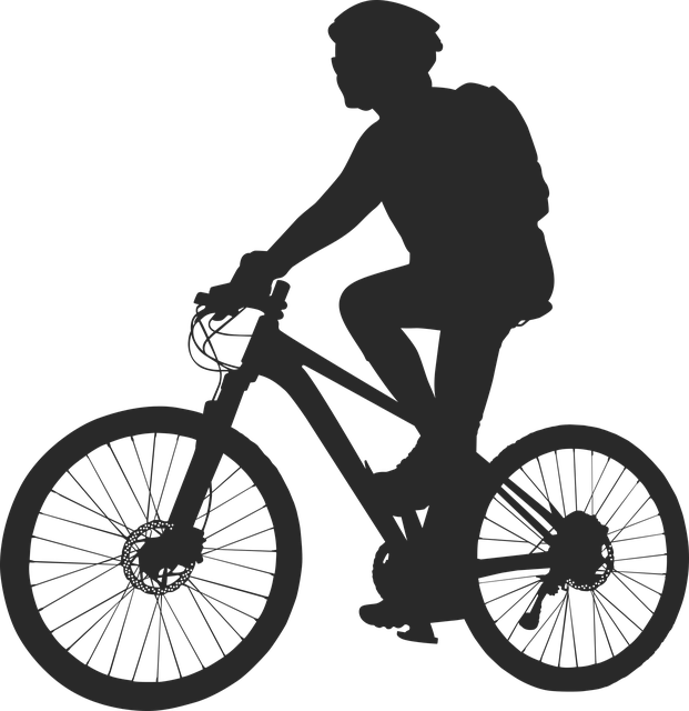 Bmw Mountain View >> Cycling Bike · Free vector graphic on Pixabay
