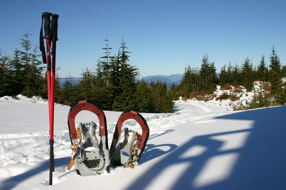 Sněžnice, Zimní Sporty, Sníh, Treking, Zimní, Studený