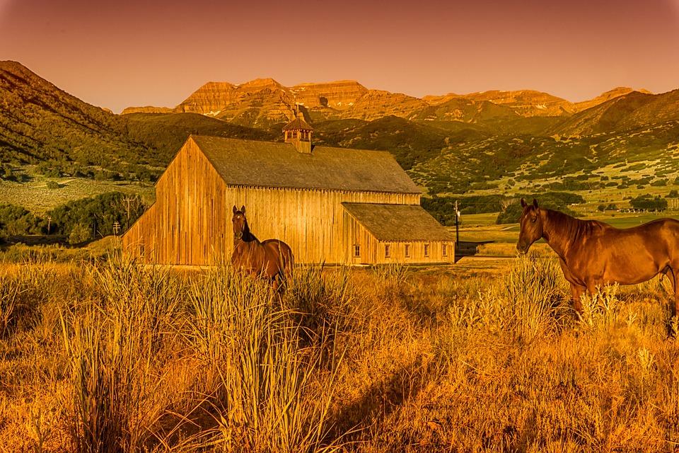 Barn, Utah, Horse, Farm, Landscape, Usa, Building