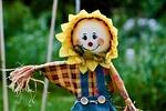 scarecrow, garden, spring