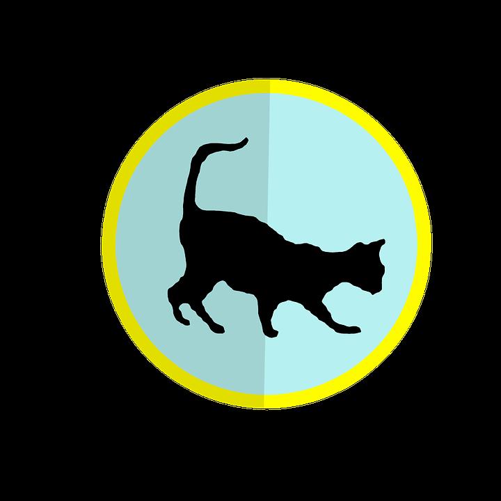 kucing bayangan clipart gambar gratis di pixabay kucing bayangan clipart gambar gratis