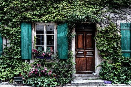 Ivy, Facade, House, Belgium, Door