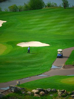 senior cobra golf clubs