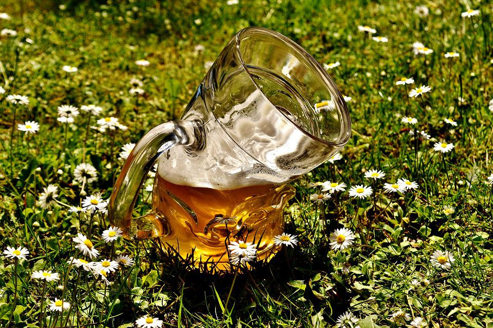 Birra, Bicchiere Di Birra, Deforme, Bent, Divertente