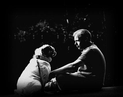Friendship, Pet, Bulldog, Trust, Master