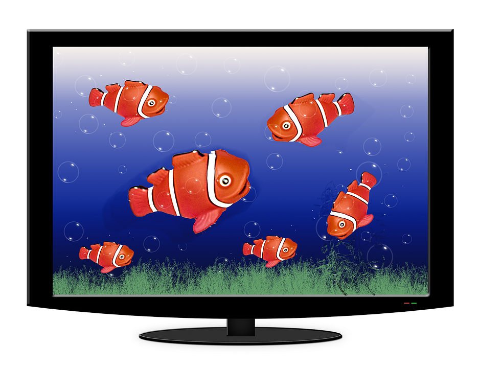 water tv free illustration aquarium tv fish water free image on