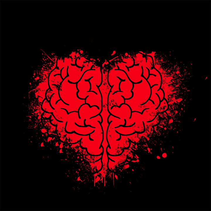 Heart, Brain, Mind, Psychology, Doubt, Open Mind