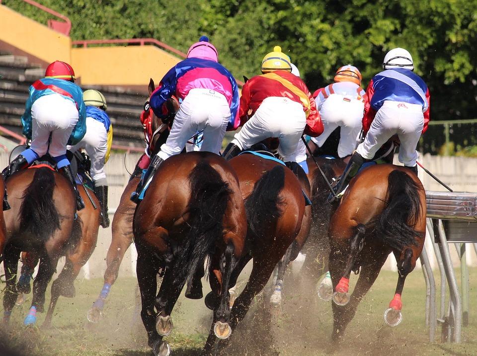 Pferderennen, Pferd, Jockey, Mauritius