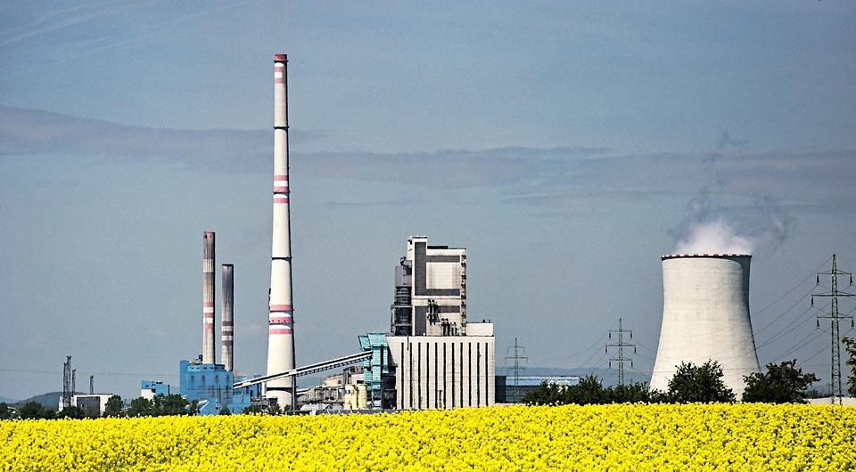 Biopaliv, Elektrárna, Řepkový