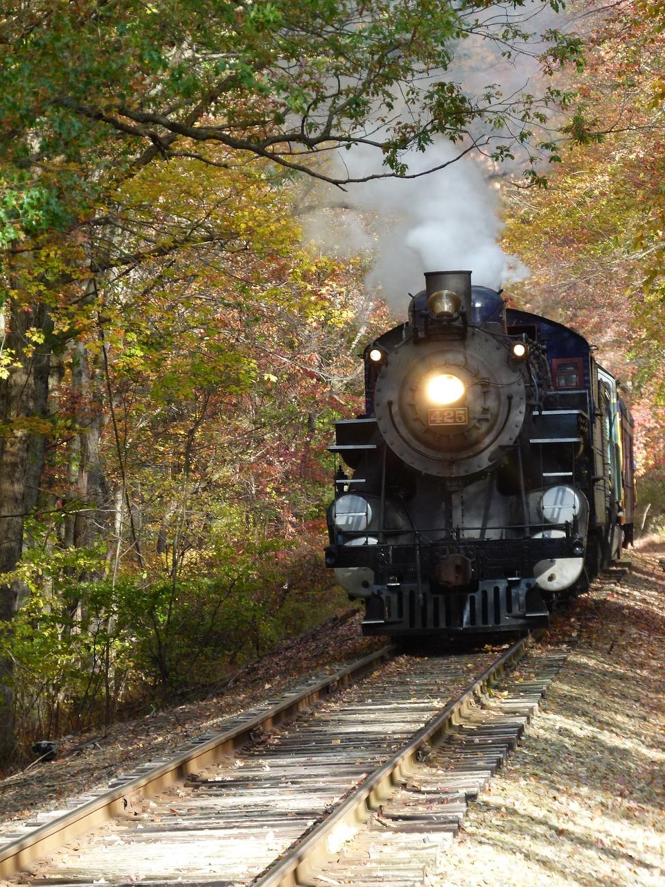 последнее время фото поездов для авы пышный
