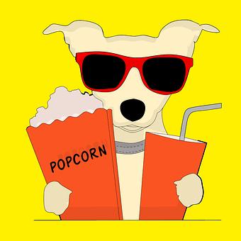 Dog, Popcorn, Cinema, Movies, Watch